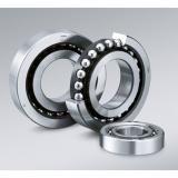 RAE type Radial insert ball bearings RAE60-NPP RAE 60 NPP